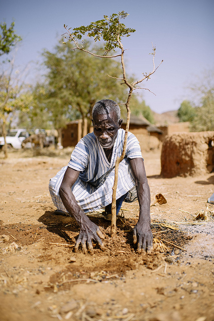 A farmer in Burkina Faso. Photo: Ollivier Girard for Center for International Forestry Research (CIFOR